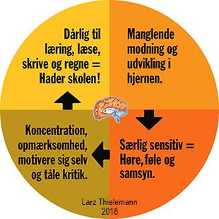 Sensitiv_cyklus.jpg